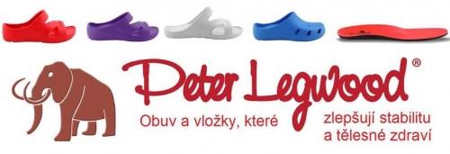 logo cesky PL